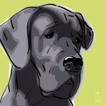 Canvas Print GREAT DANE LIME