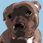 Canvas Print AMERICAN STAFFORDSHIRE TERRIER LIGHT BLUE