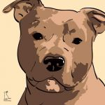 Canvas Print AMERICAN STAFFORDSHIRE TERRIER GOLD