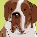 Canvas Print ST. BERNHARD LIME