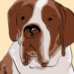 Canvas Print ST. BERNHARD GOLD