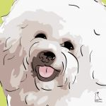 Canvas Print BICHON FRISE LIME