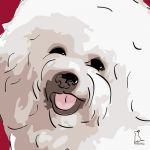 Canvas Print BICHON FRISE BORDEAUX