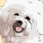 Canvas Print BICHON FRISE GOLD