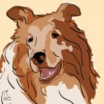 Canvas Print COLLIE GOLD