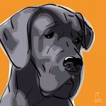 Canvas Print GREAT DANE ABRICOT