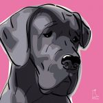 Canvas Print GREAT DANE PINK