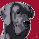Canvas Print GREAT DANE BORDEAUX