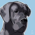 Canvas Print GREAT DANE LIGHT BLUE