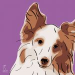 Canvas Print SHELTIE VIOLET