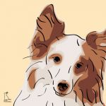 Canvas Print SHELTIE GOLD