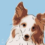 Canvas Print SHELTIE LIGHT BLUE