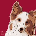 Canvas Print SHELTIE BORDEAUX