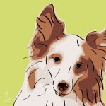 Canvas Print SHELTIE LIME