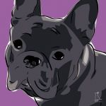 Canvas Print FRENCH BULLDOG VIOLET