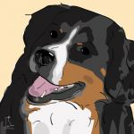 Canvas Print BERNESE MOUNTAIN DOG GOLD