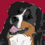 Canvas Print BERNESE MOUNTAIN DOG BORDEAUX