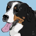 Canvas Print BERNESE MOUNTAIN DOG LIGHT BLUE
