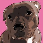 Canvas Print AMERICAN STAFFORDSHIRE TERRIER PINK