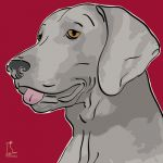 Canvas Print WEIMARANER BORDEAUX