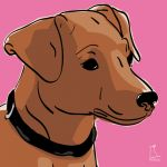 Canvas Print MINIATURE PINSCHER PINK