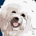 Canvas Print BICHON FRISE DARK BLUE