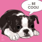 Canvas Print BOSTON TERRIER PINK