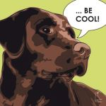 Canvas Print LABRADOR RETRIEVER LIME
