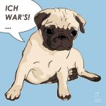 Canvas Print PUG LIGHT BLUE